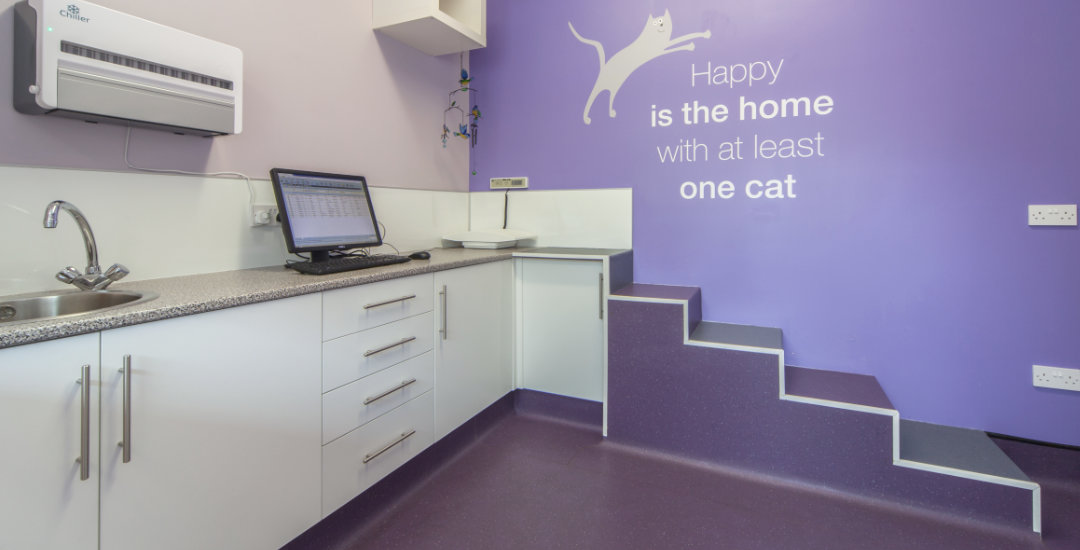 Banking on the relocation of a veterinary practice